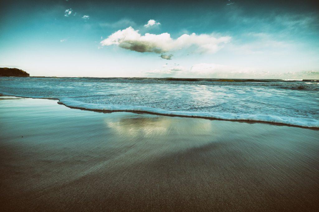海に行く前には波の高さや風の向きをチェックする