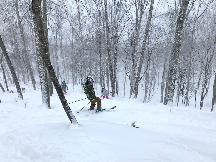斑尾高原スキー場のツリーラン