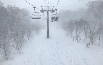 【スキー場車中泊の旅】野沢温泉まさかのパウダー深すぎてツリーラン入れず!