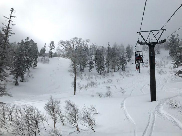 【雪不足2020】湯沢のスキー場で2月終わりに恵の雪!今期最高パウダーゲット!