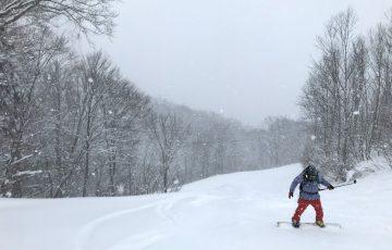 雪不足の湯沢のスキー場にも恵の雪!パウダー滑ってきました!