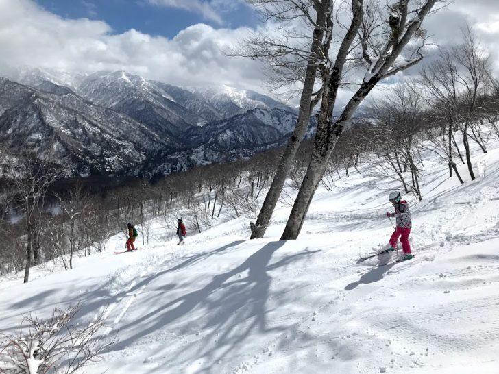 【スキー場車中泊の旅】奥只見丸山スキー場のツリーランは子連れでも楽しめる!