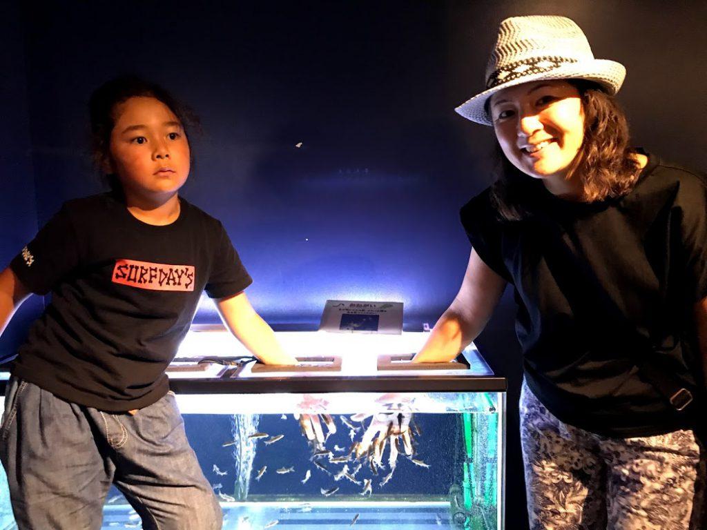 北海道一周車中泊旅7日目:サケのふるさと千歳水族館で観光