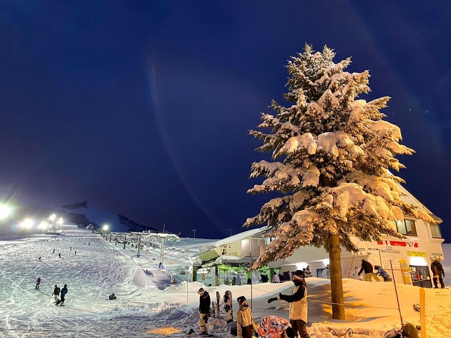 2021年1月の岩原スキー場 積雪の様子