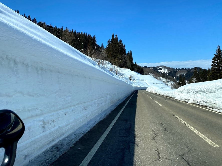 雪質抜群、コースも豊富な松之山温泉スキー場